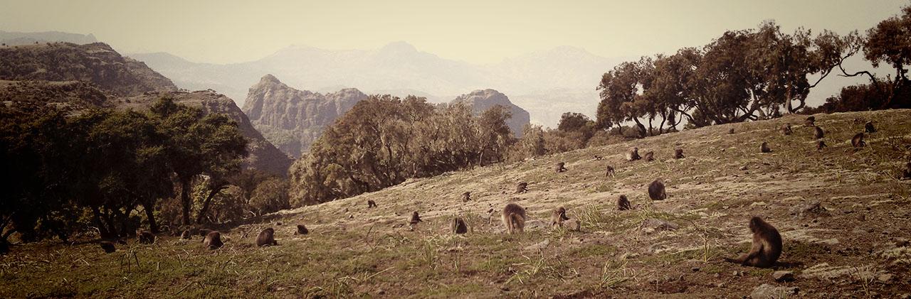 15-Etiopia