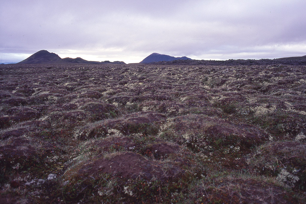 029-islanda-1996313