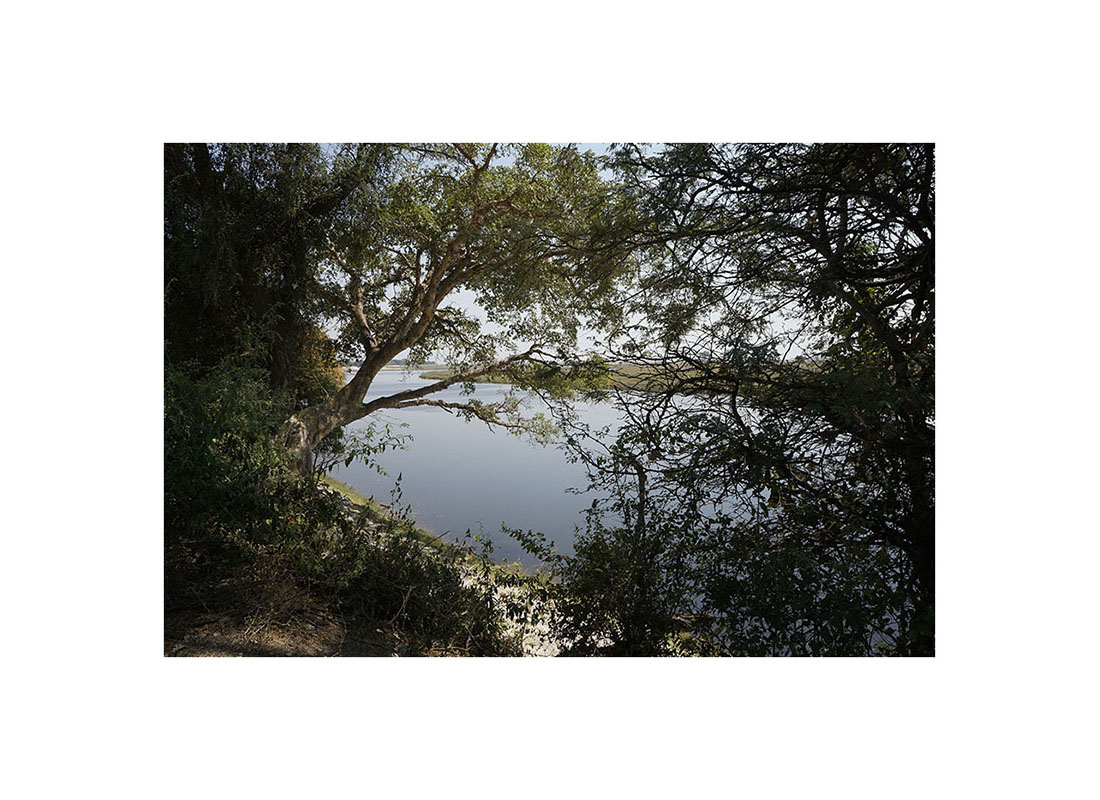008-botswana-okavango-paolo-cardinali