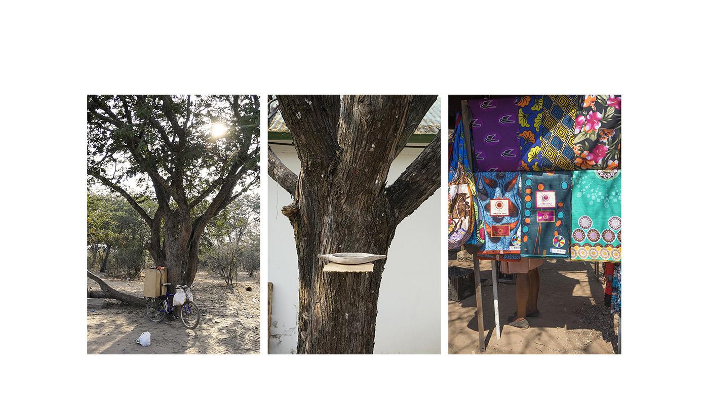 011-botswana-okavango-paolo-cardinali