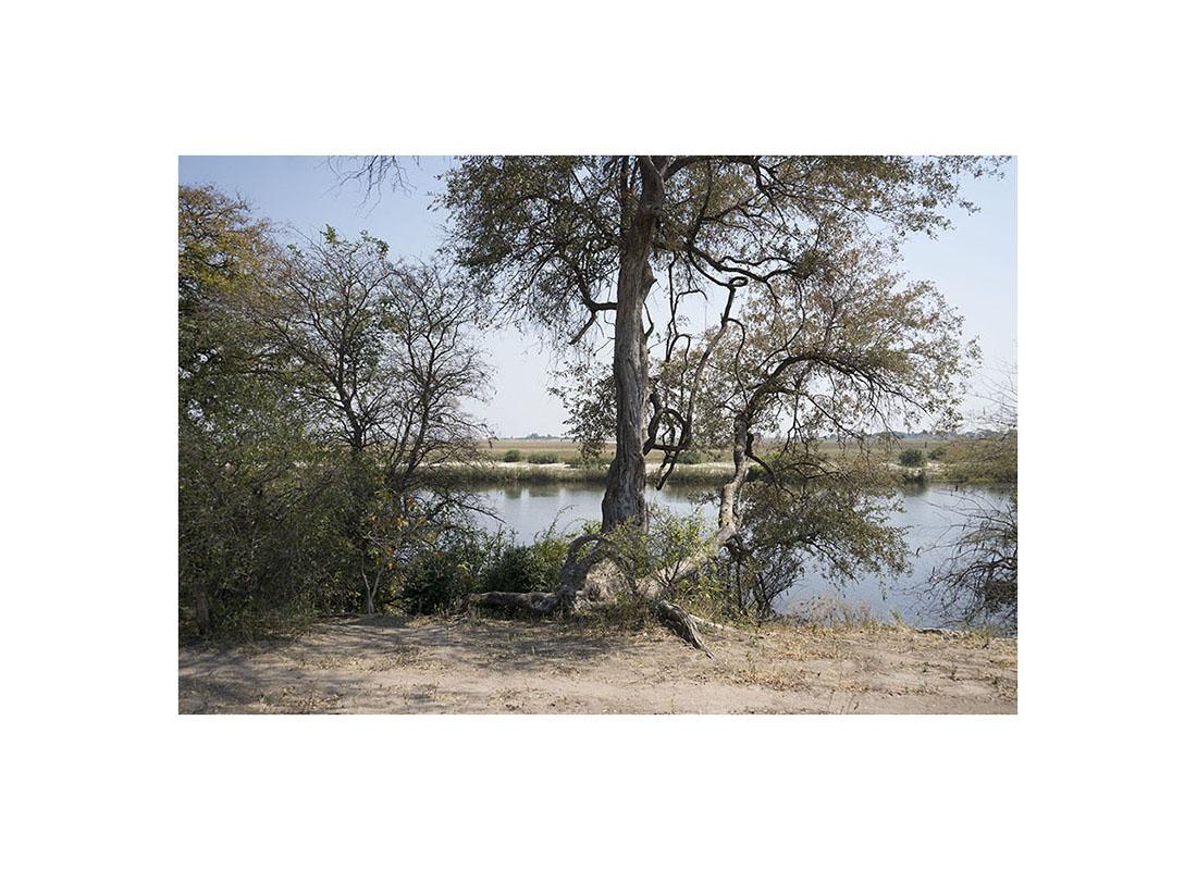 013-botswana-okavango-paolo-cardinali